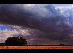 ~ Thunder and Rain [2] ~