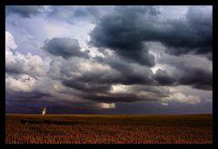 ~ Thunder and Rain ~