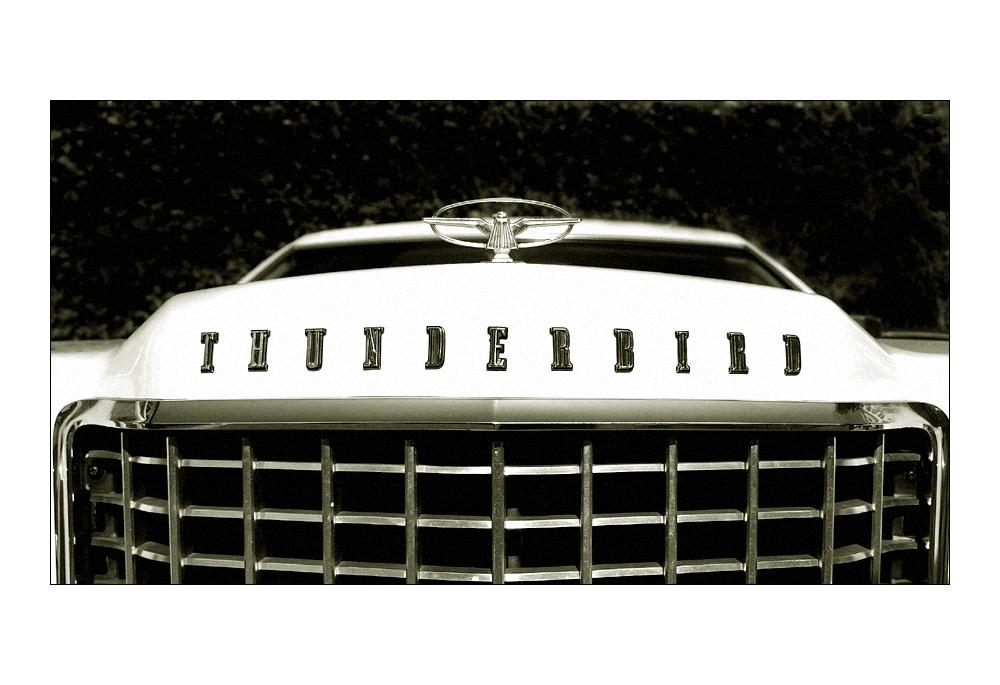 >thunderbird<