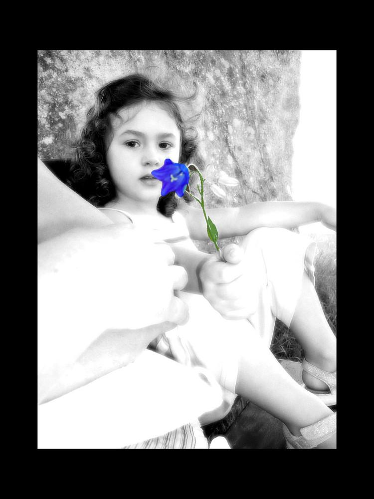 Ti regalo un fiore
