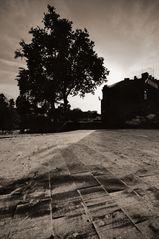 Tiber Insel