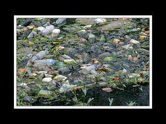 Tibet 2010 009