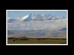 Tibet 2010 041