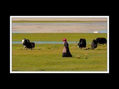 Tibet 2010 046