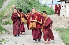 Tibet (45)