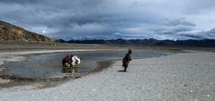 Tibet (47)