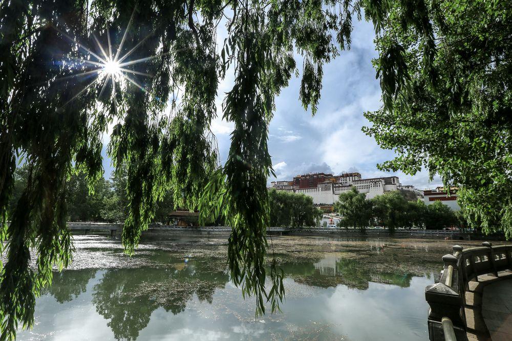 Tibet (60)