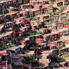 Tibet (76)