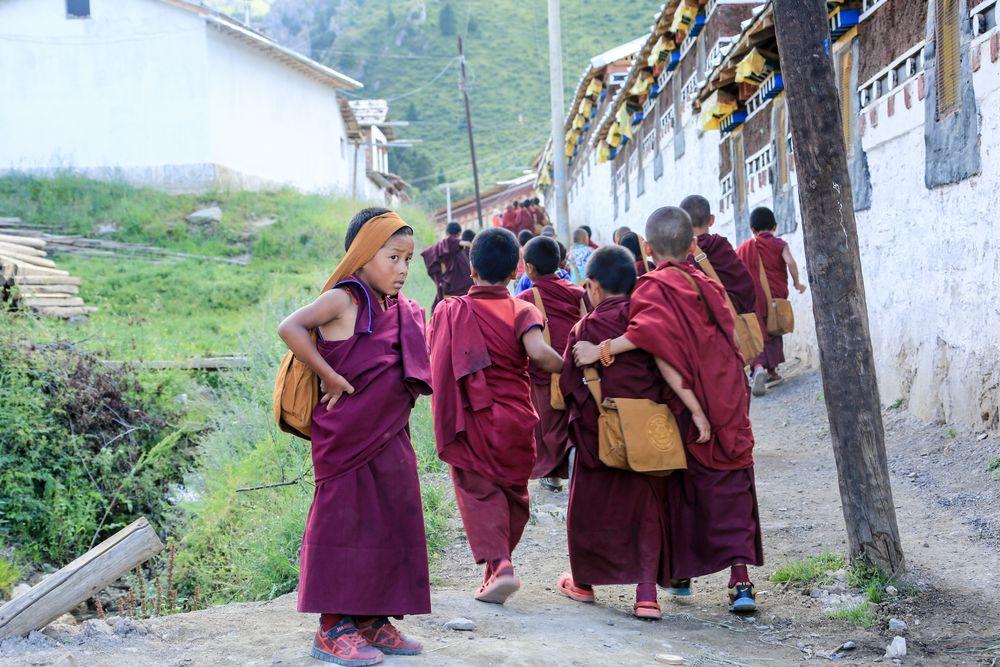 Tibet (90)