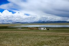 Tibet (98)