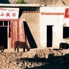 Tibet Überland  EMS Restaurant