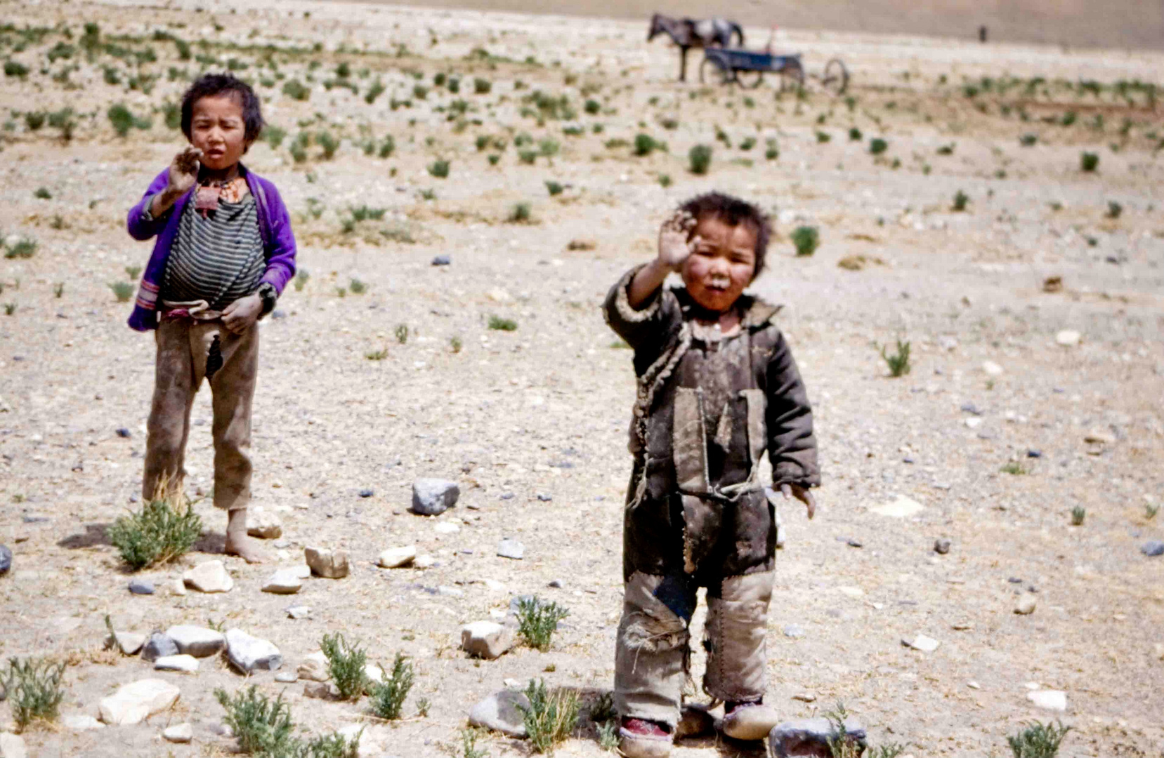 Tibetan kids