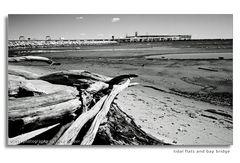 Tidal Flats and Bay Bridge