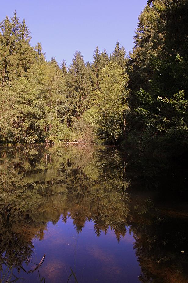 Tief im Odenwald...