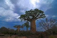 Tief im Westen Madagaskars