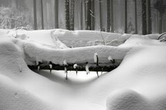 Tief verschneit