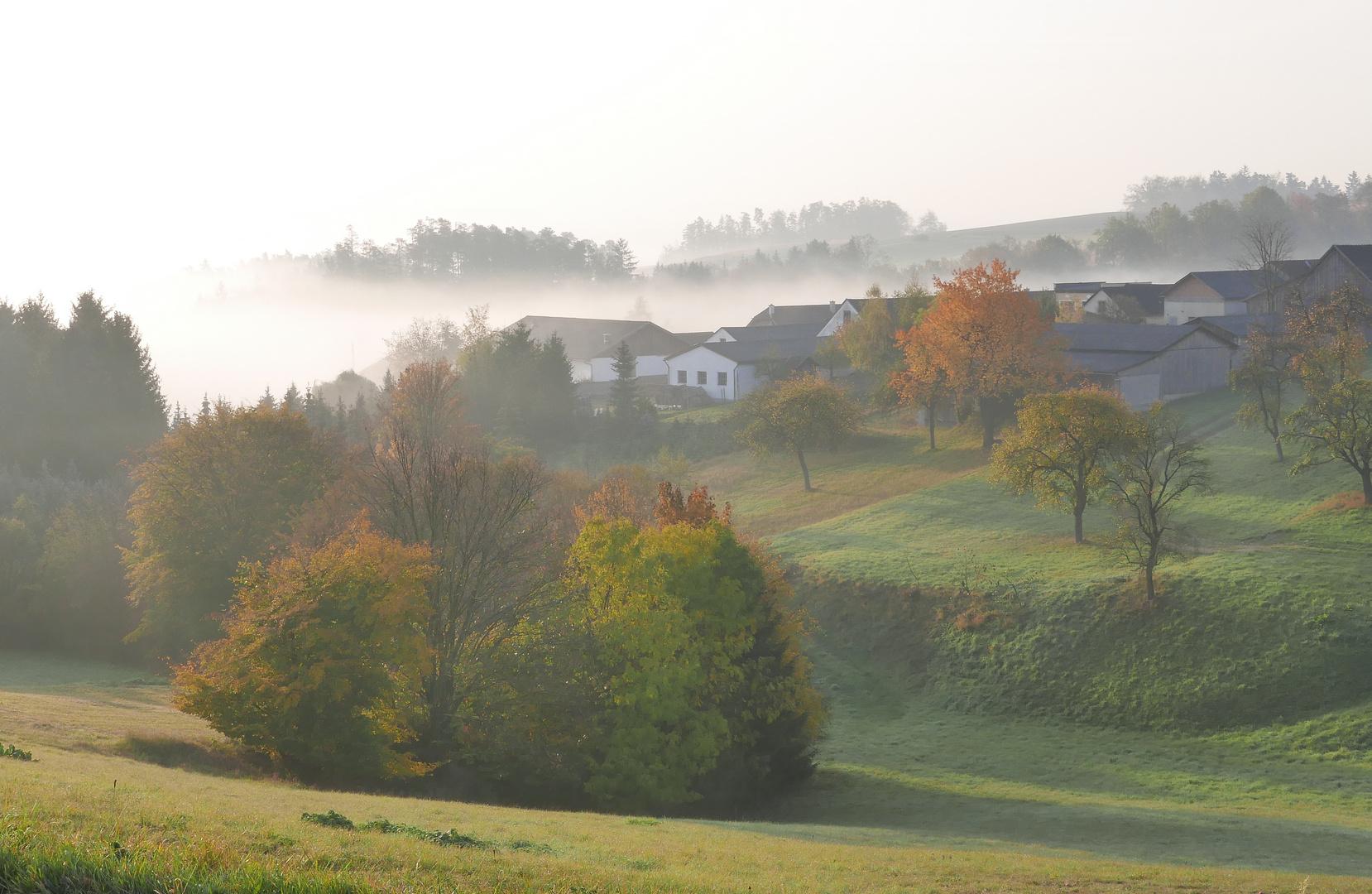 Tiefenbach im Nebel