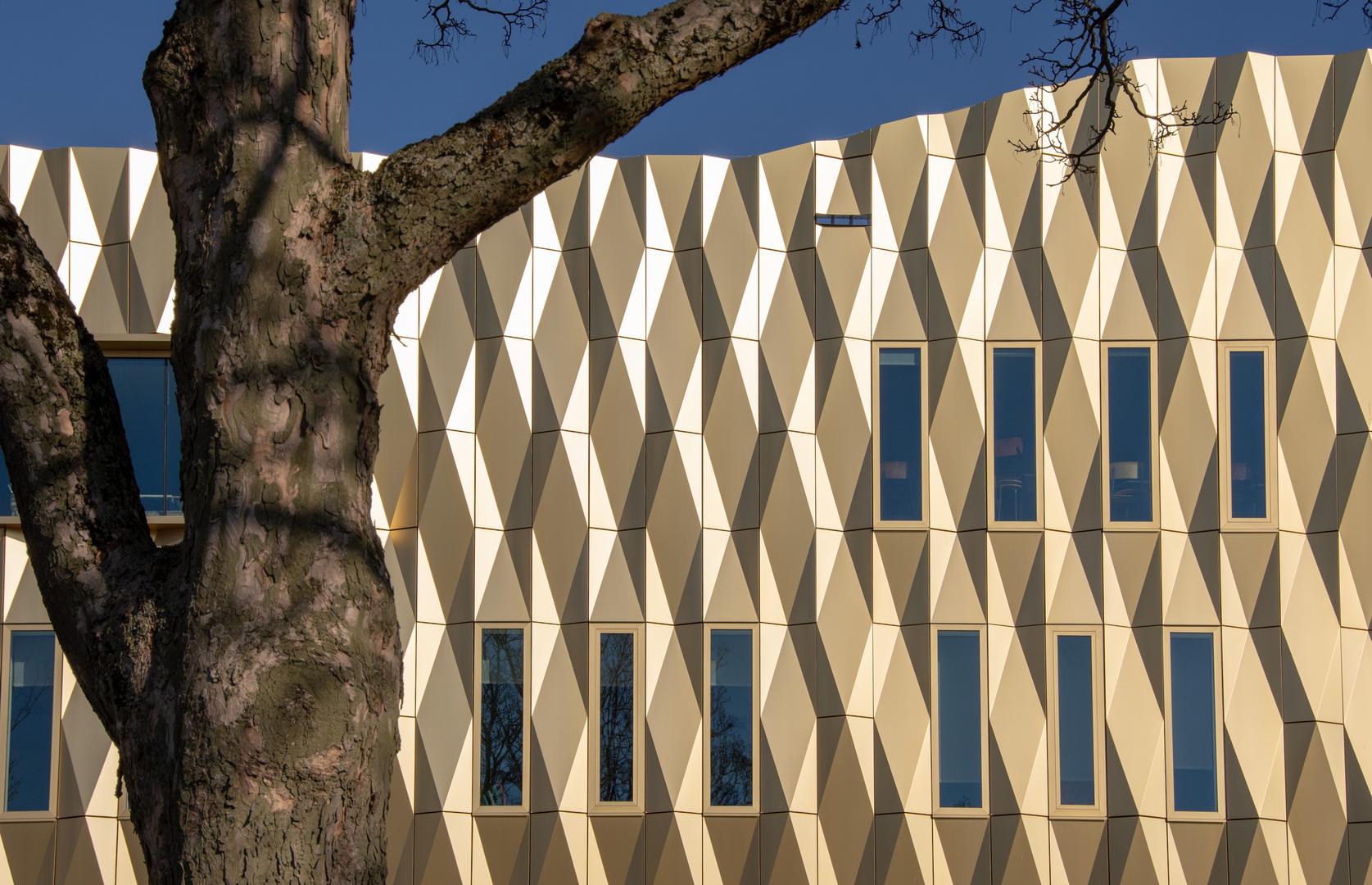 Tiel - Kerkstraat - Library - 03
