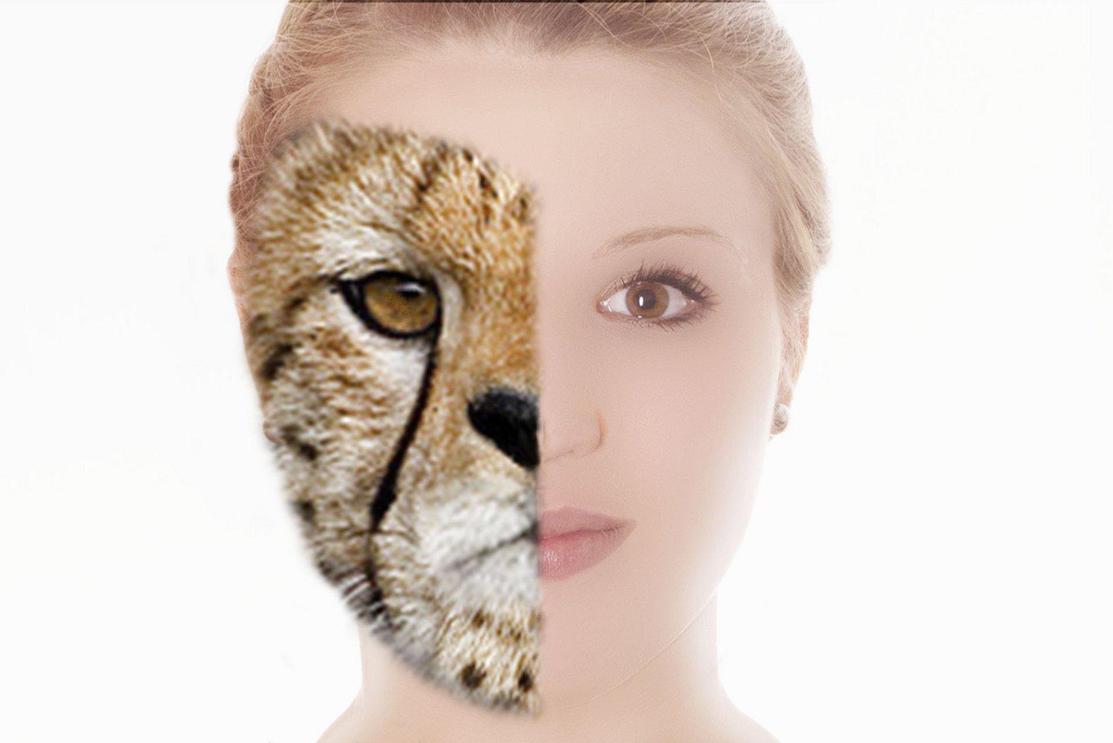 Tier Mensch