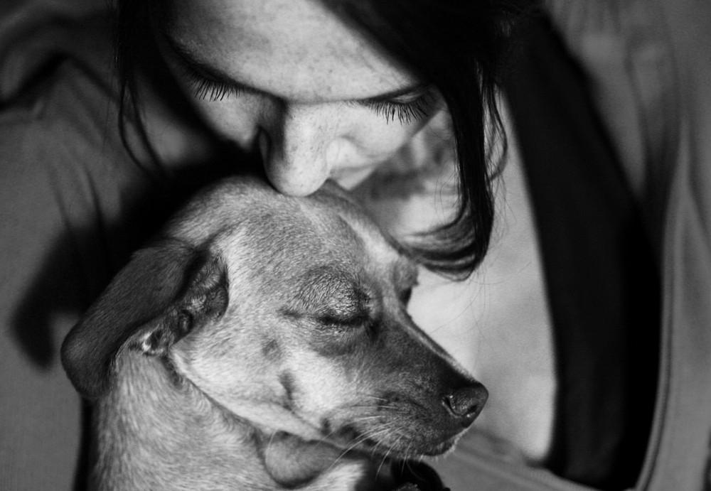 Tier und Mensch - die große Liebe