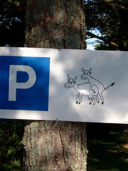 Tierarztparkplatz in Schweden