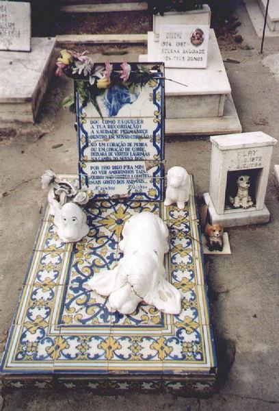 Tierfriedhof ....
