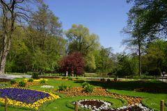 Tiergarten im Frühling