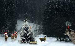 Tierisch ernste Weihnachten