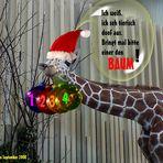 Tierische Adventsvorbereitungen