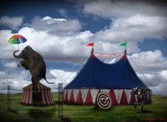 Tierischer Zirkus
