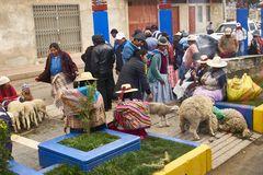 Tiermarkt im Dorf