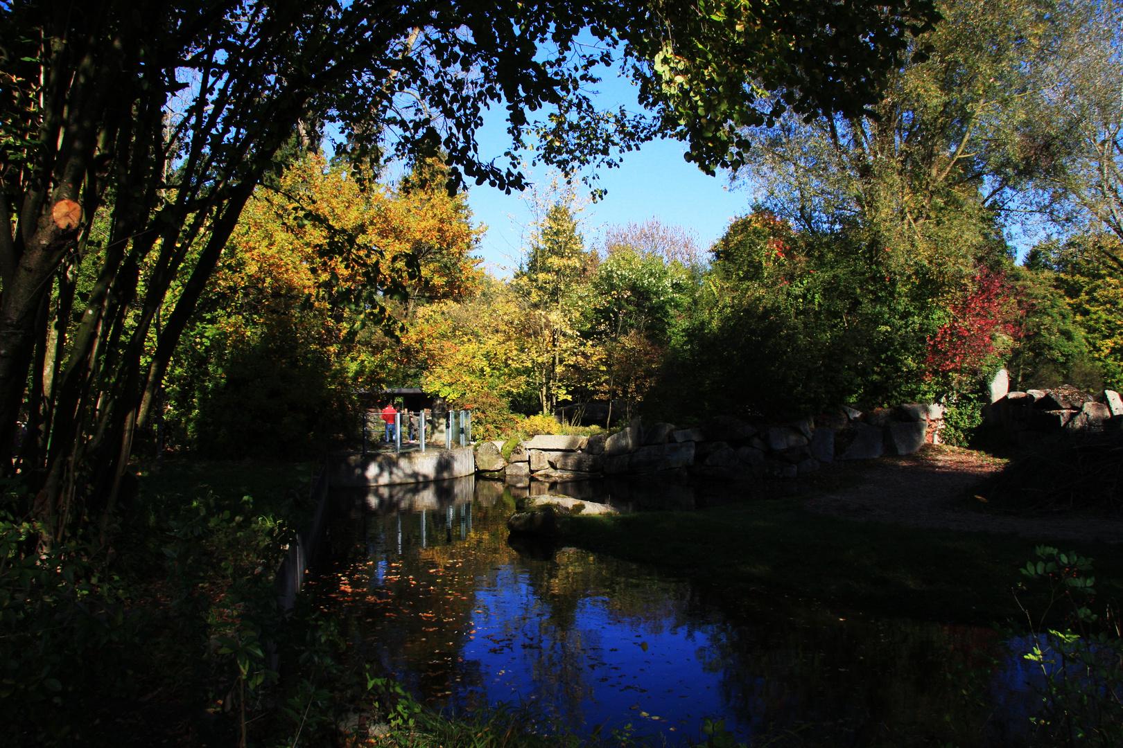 Tierpark- Herbststimmung
