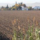 Tierra de labor en otoño