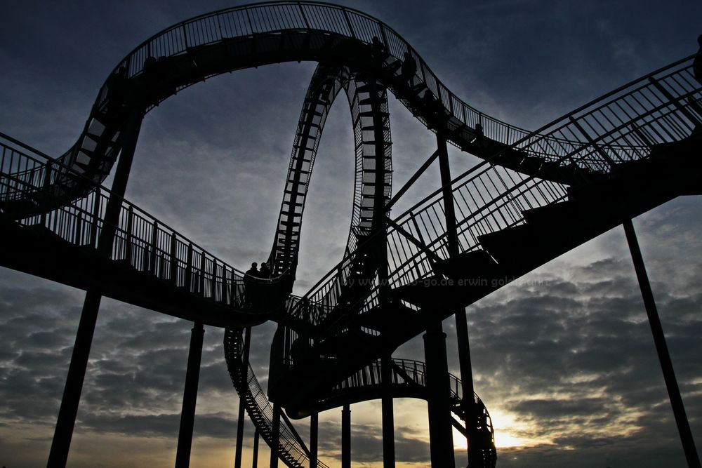 Tiger and Turtle 1