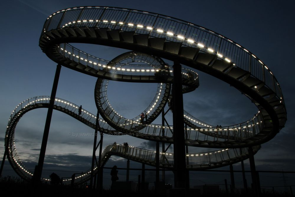 Tiger and Turtle 6