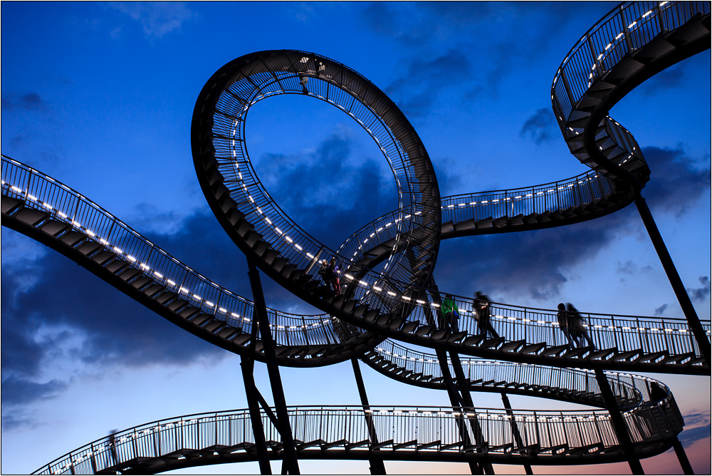 tiger and turtle III