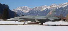 Tiger F-5 gelandet