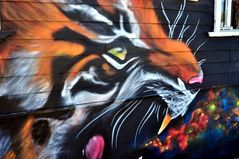 Tiger-Fassade
