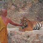 Tiger Tempel