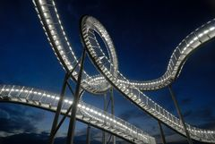 Tiger & Turtle (2)