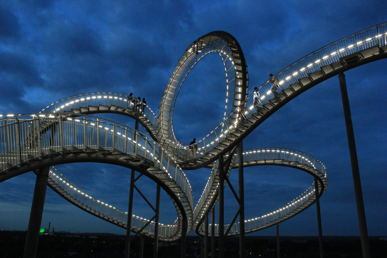 Tiger & Turtle 6