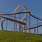 """Tiger & Turtle"""