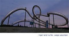 TIGER + TURTLE