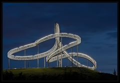 Tiger & Turtle die xte....