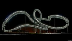 Tiger & Turtle - Magic-Mountain