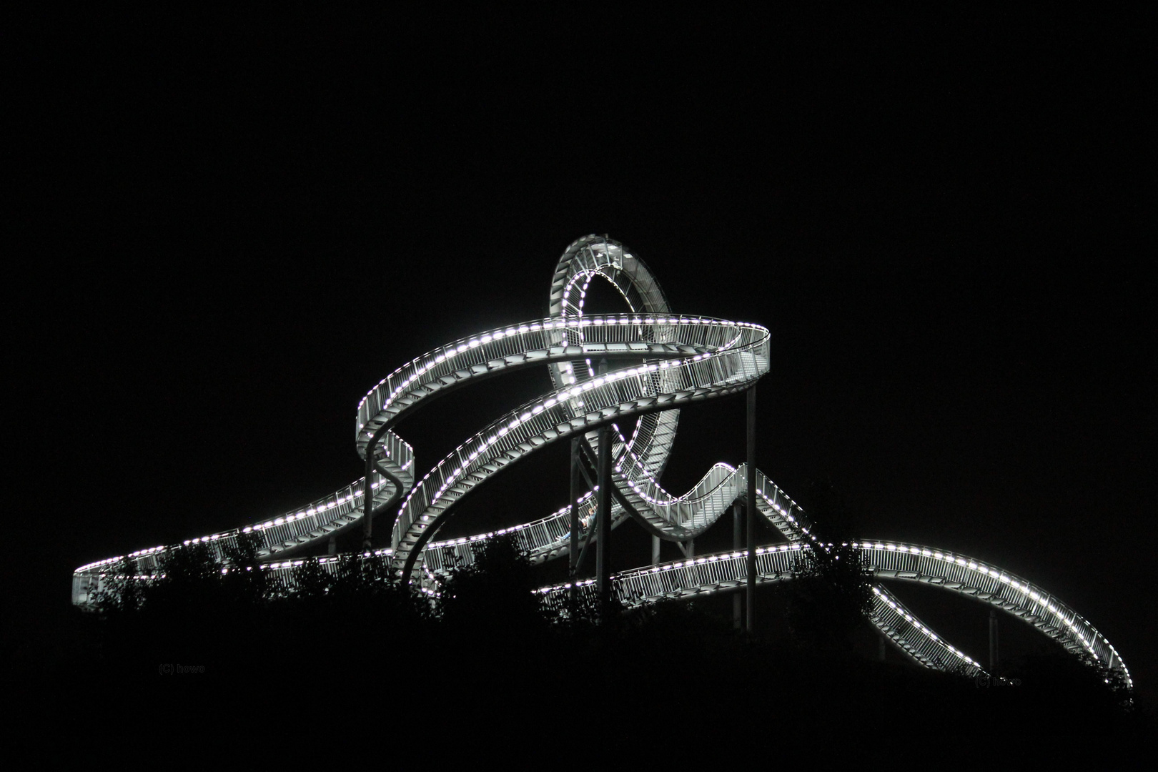 Tiger & Turtle2