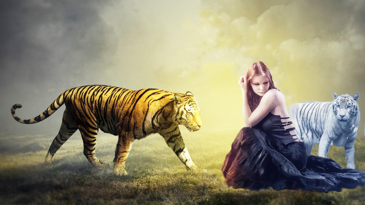 tigerkönigin 1