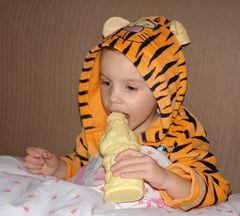 Tigermahlzeit