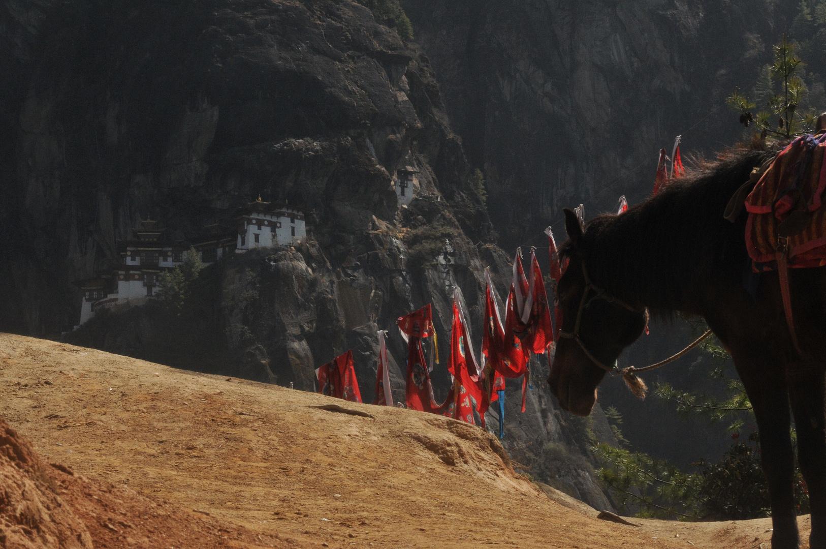 Tigernest (Bhutan)