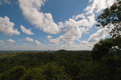 Tikal von oben